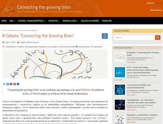 Workshop «Connecting the Growing Brain»